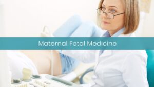 Womens Health IVF